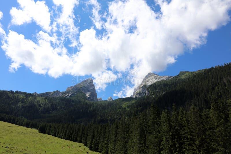 Watzmann mountain peak. National Park Berchtesgadener Land. Bavaria. Germany stock image