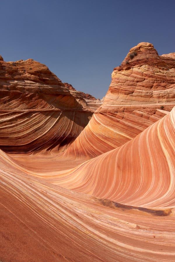 Download Wave stock image. Image of coyote, desert, arizona, wave - 11021281
