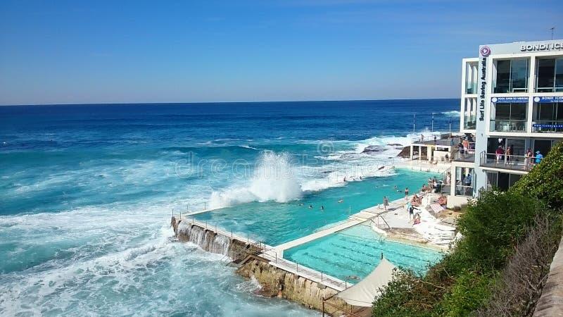 Wave all'hotel di Ovolo, spiaggia di Bondi, Australia fotografia stock libera da diritti
