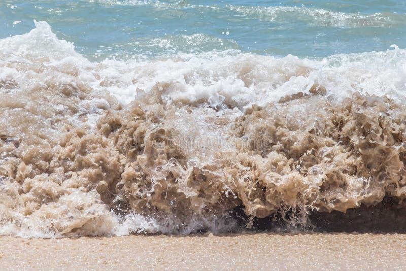 Wave in Atlantic Ocean royalty free stock photo