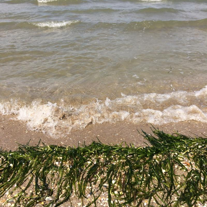 Summer. Wave Black Sea Sand sunset stock photos