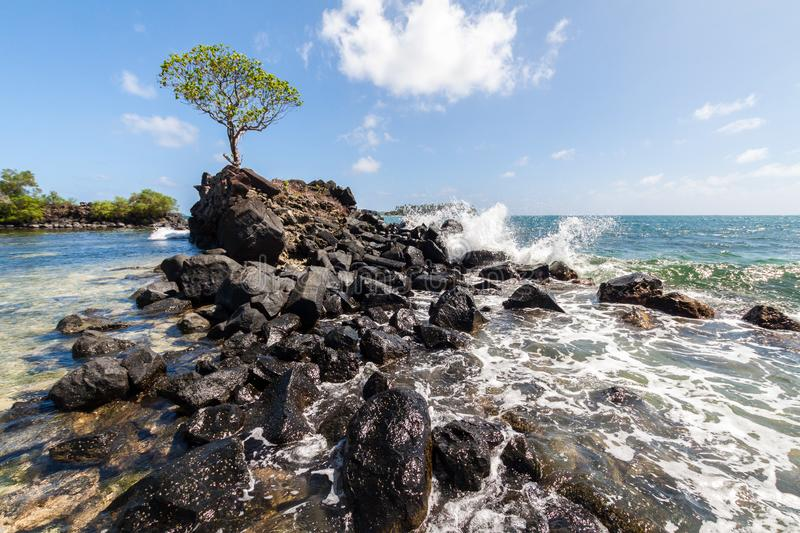 Wave breaks over prehistoric ruined wave breaker with a lonely tree. Nan Madol. Lagoon of Pohnpei, Micronesia, Oceania. Wave breaks over prehistoric ruined wave royalty free stock photos