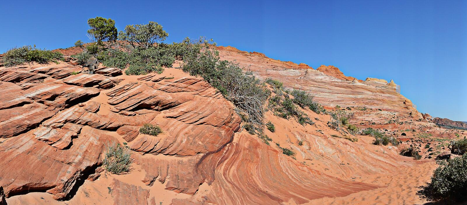 The Wave - Coyote Buttes South royalty free stock photo