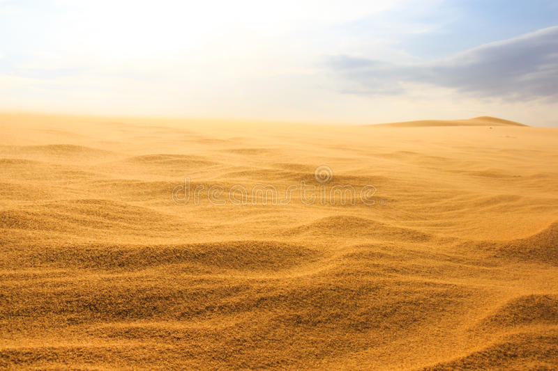 Wave on desert royalty free stock photography