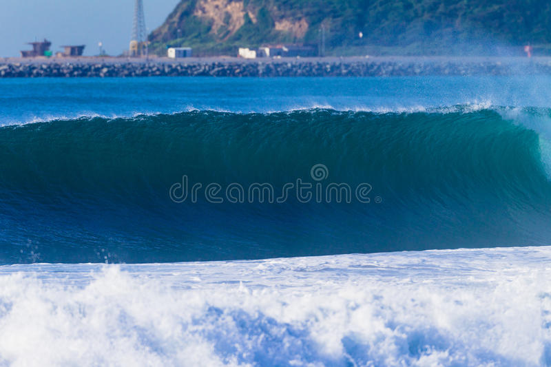 Wave Feathering Upright Stock Images