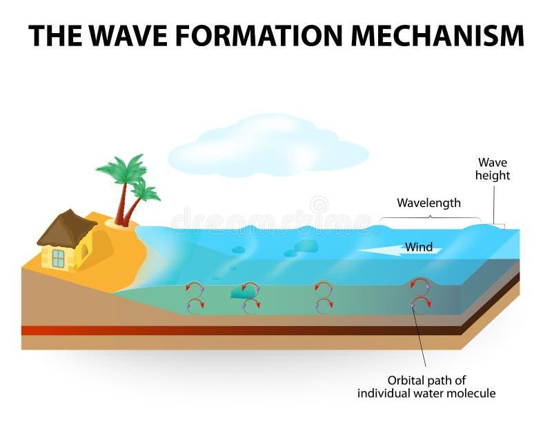 Wave formation mechanism vector illustration