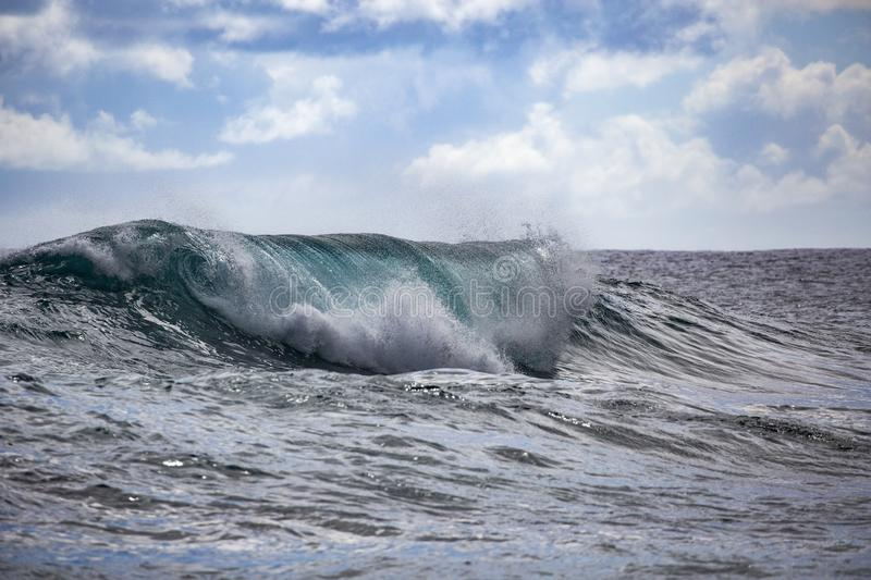 Wave Hawaii stock images