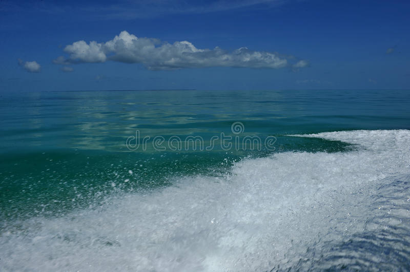 Wave from motor on water