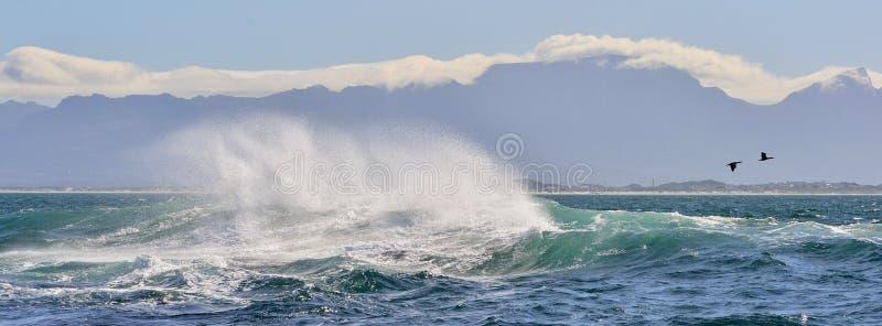 Wave Ocean Wave crashing ocean water power. Powerful ocean waves breaking. Wave on the surface of the ocean. Wave breaks on a stock image