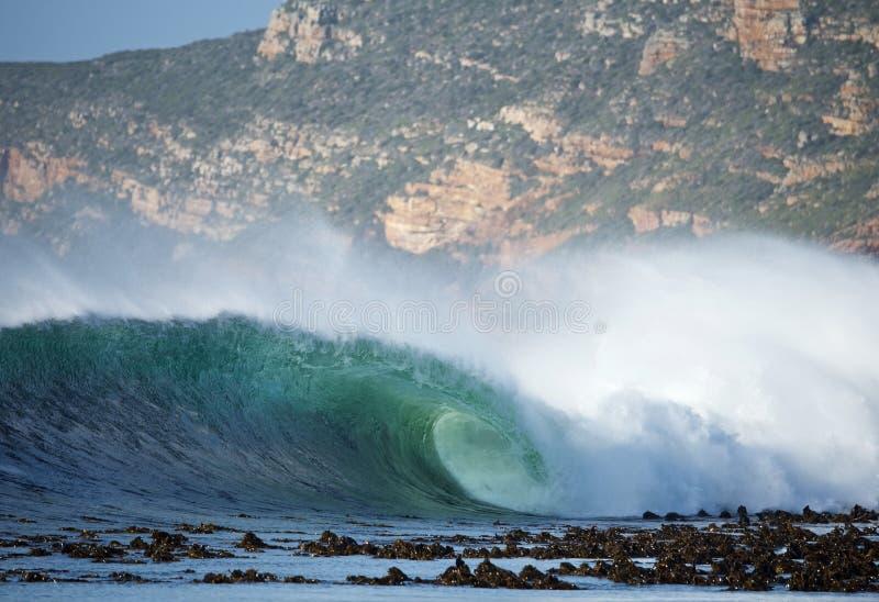 Wave praticante il surfing Cape Town immagini stock libere da diritti
