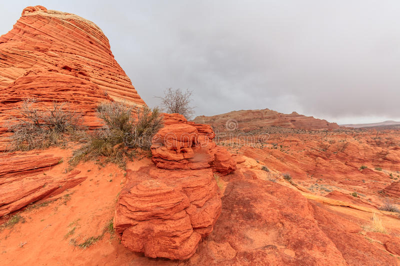 The Wave. Sandstone Rock Formation, Arizona, Coyote Buttes royalty free stock photography