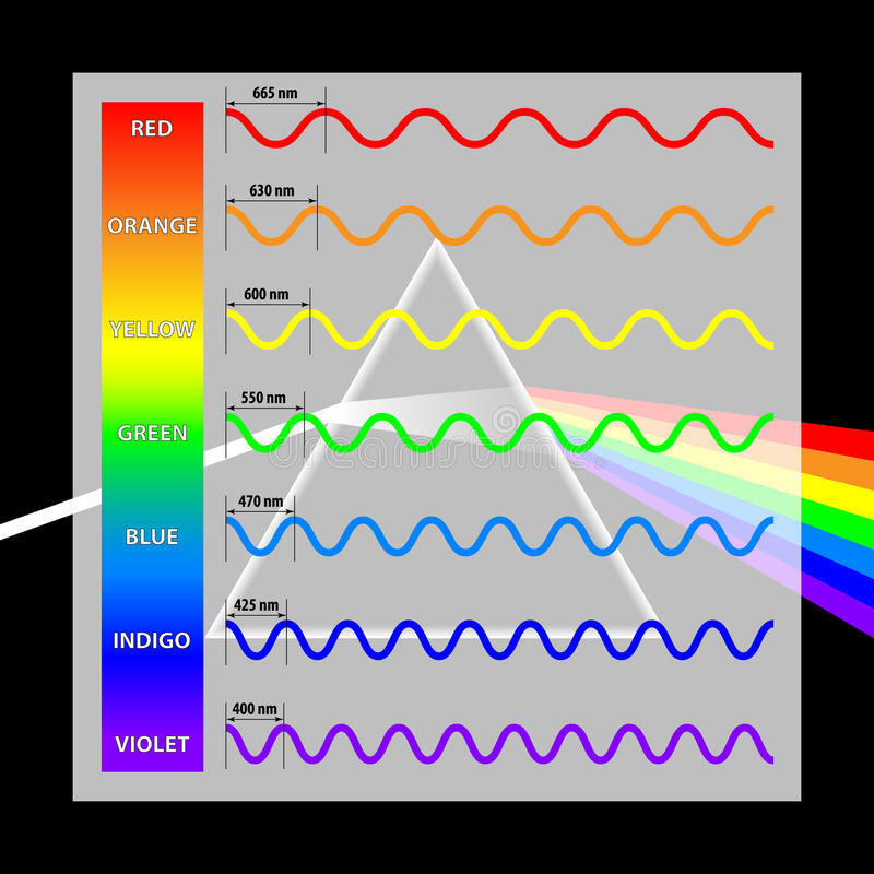 Wavelength colors in the spectrum royalty free illustration