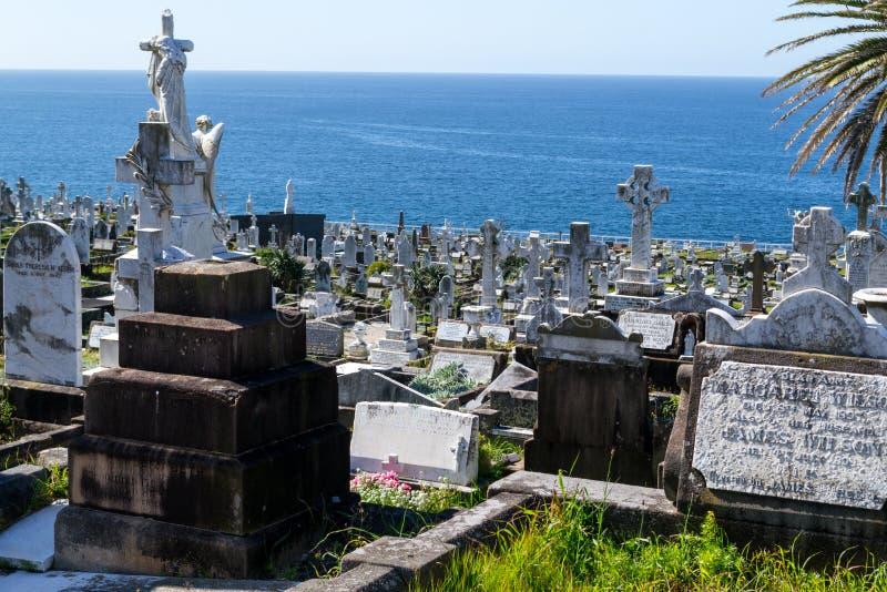 Waverley Cemetery in Sydney. Waverley Cemetery in the Bondi to Coogee walk (Sydney royalty free stock image