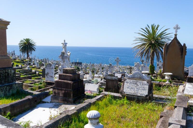 Waverley kyrkogård i Sydney fotografering för bildbyråer