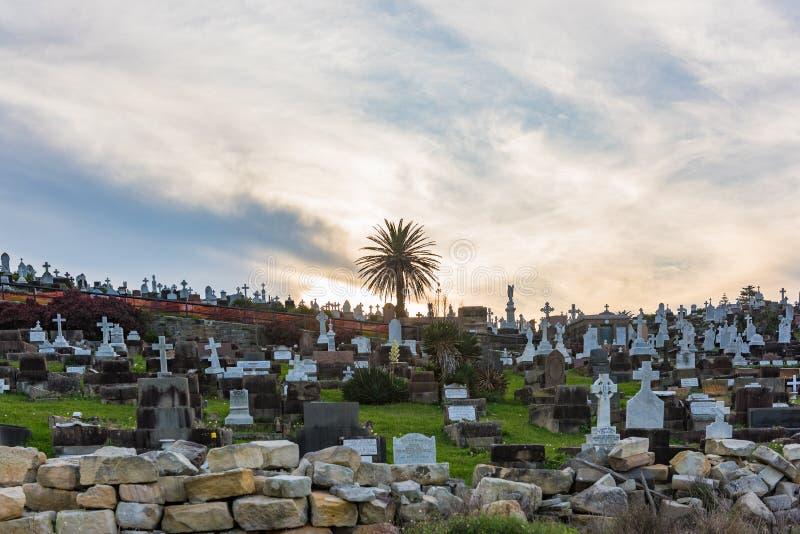 Waverley kyrkogård i Sydney, Australien royaltyfri bild