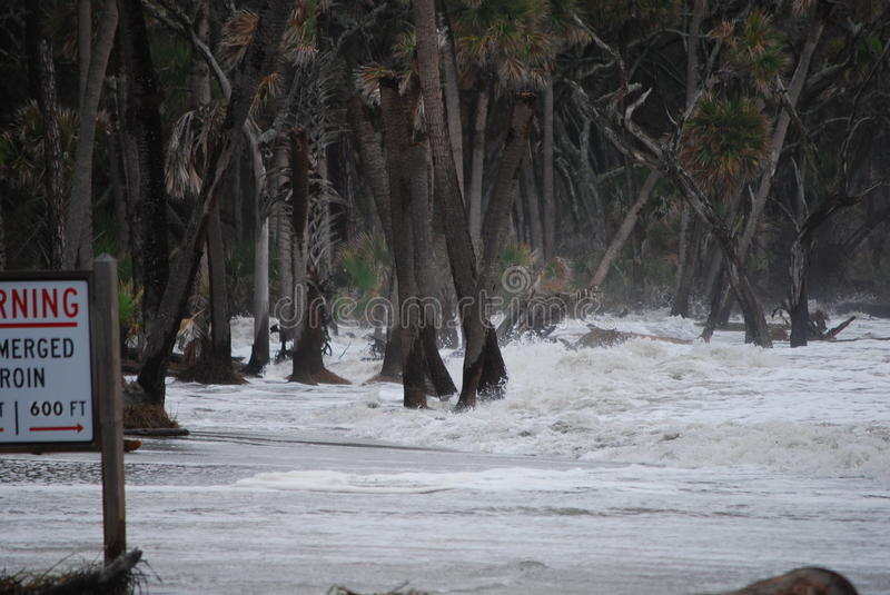 Waves from 2011 Hurricane Irene. This photo taken on Hunting Island in South Carolina as the eye of Hurricane Irene passed just to the west. The waves distryed stock image