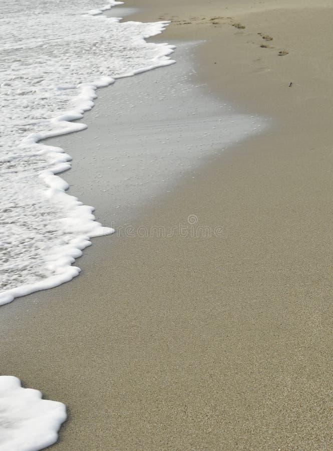 Download Waves on beach stock photo. Image of seaside, coastline - 17073192