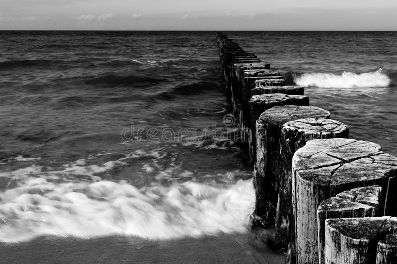 Wooden groynes in black and white royalty free stock image