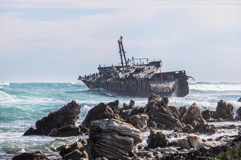 Waves crashing by a rusted old shipwreck. Home to Cormorants, sea gulls and other birds. stock photography