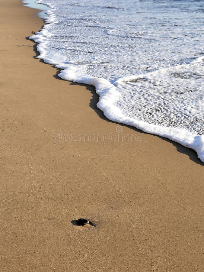Waves lapping against sand on the California coast. Sea foam and sandy beaches in summer sunlight for travel blogs, website banner. S, social posts royalty free stock photo