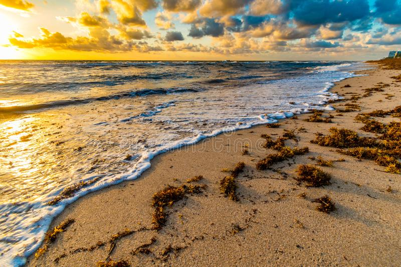Waves on Miami beach in colorful sunrise, Florida, United States of America. Waves on Miami beach in colorful golden sunrise, Florida, United States of America royalty free stock images
