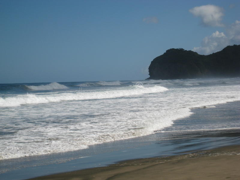 Waves of the Tasman Sea, Piha Beack royalty free stock image