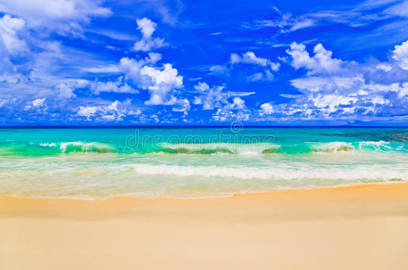 Tropical Island Beach Ambience Sound: Waves On Tropical Beach Stock Image. Image Of Landscape