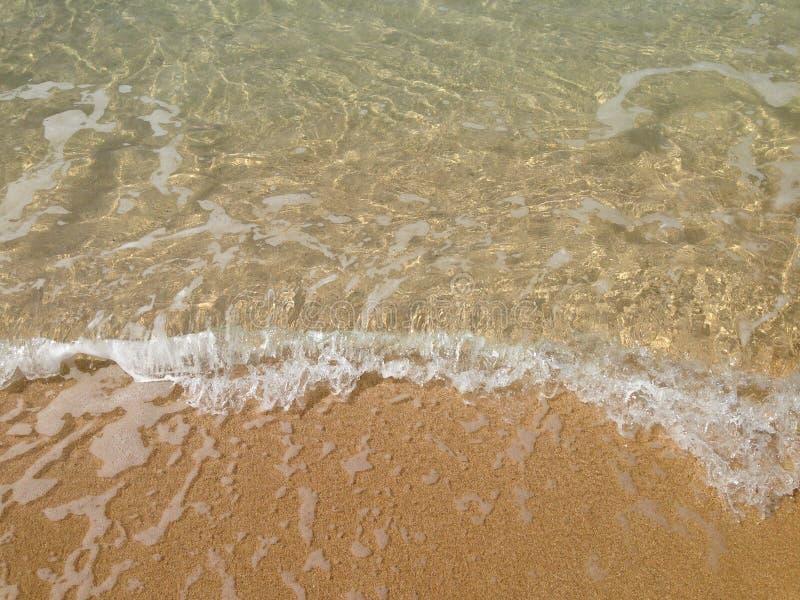 Waves at Waimea Bay. Clear waves on the sand at Waimea Bay, Hawaii royalty free stock image