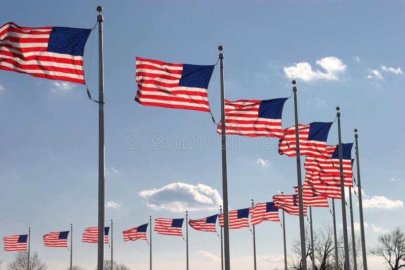 Waving Flags stock image