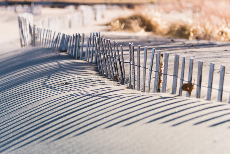 Wavy lines and long shadows of beach fence protecting native grasses stock images