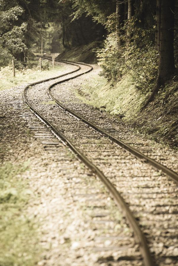 wavy log railway tracks in wet green forest with fresh meadows - vintage retro look stock photography
