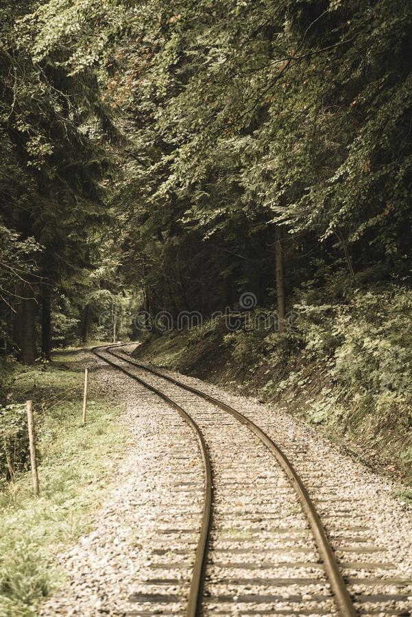 wavy log railway tracks in wet green forest with fresh meadows - vintage retro look stock image