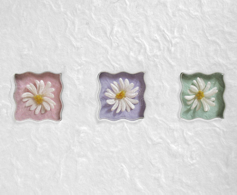 Download Wavy Pastel Daisies stock photo. Image of marguerite - 17054854