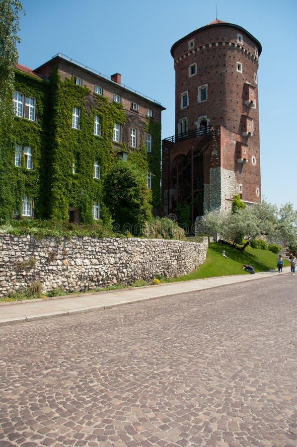 Wawel Castle in Krakow and white flowering trees stock image