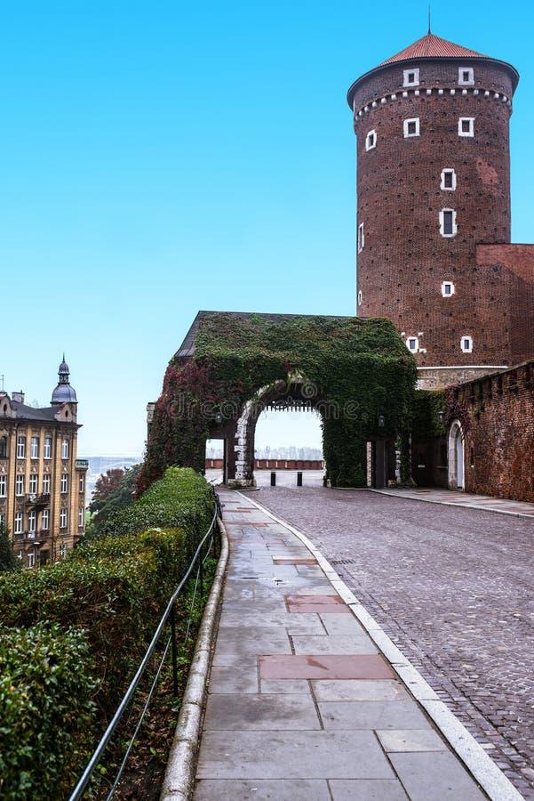 Wawel a Cracovia, Polonia fotografia stock libera da diritti