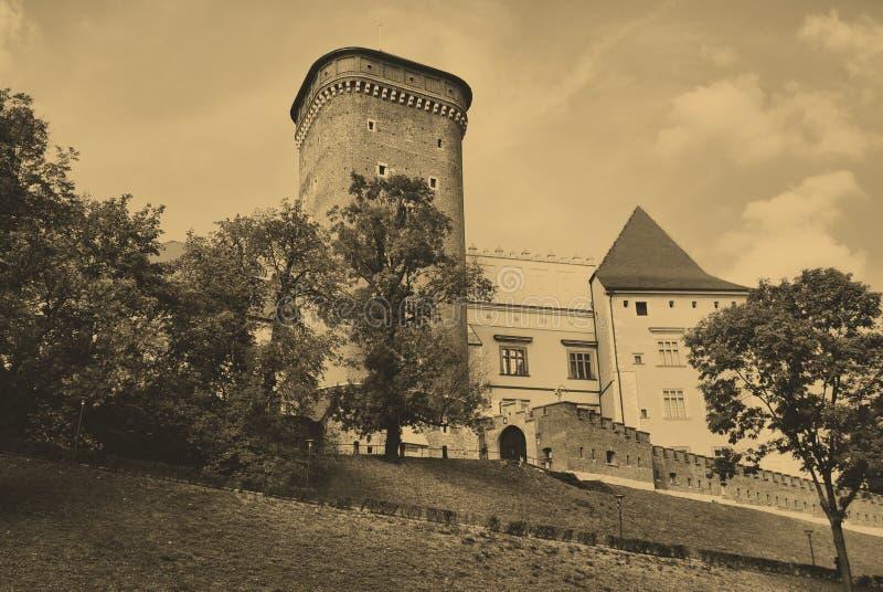 Wawel königliches Schloss in Krakau stockbild