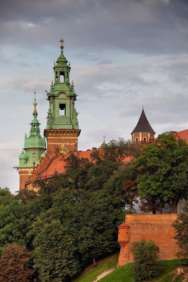 wawel krakow замока королевское стоковое фото