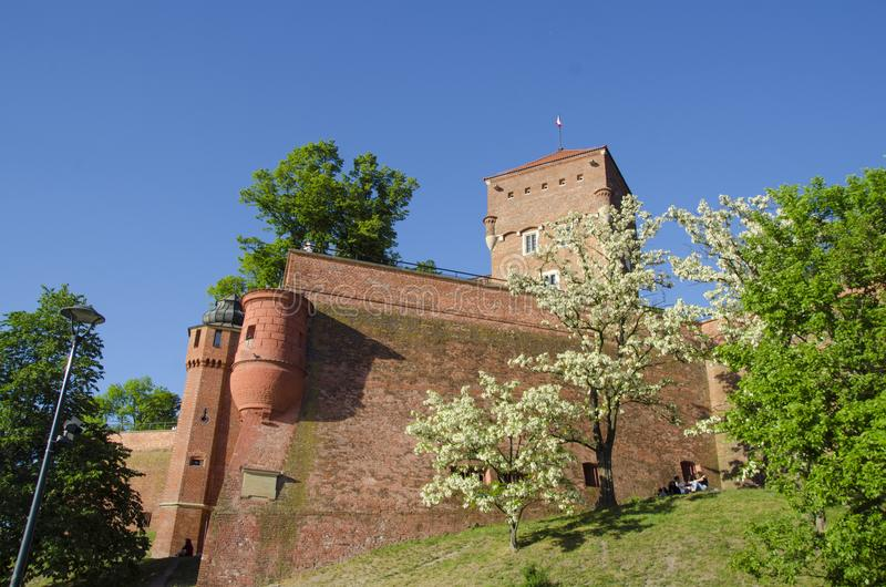 Wawel, Polonia fotografia stock libera da diritti