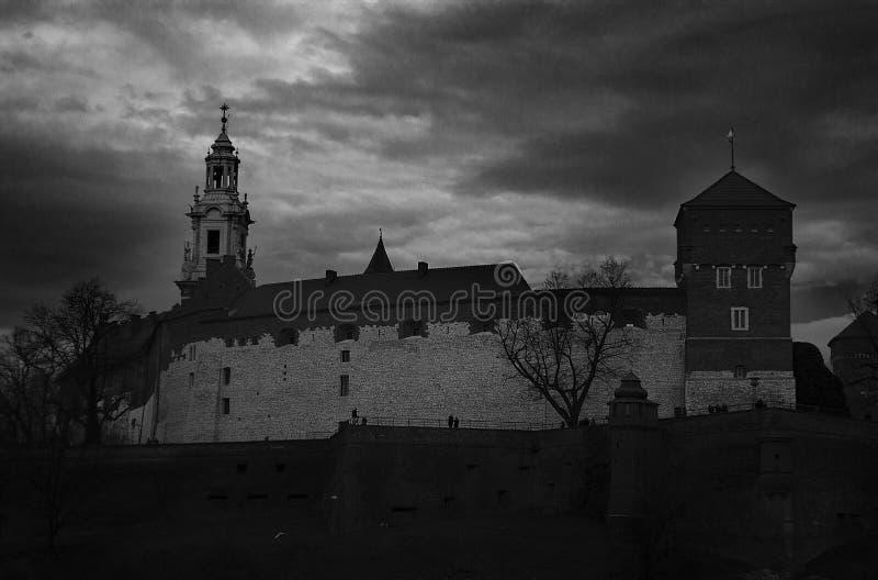 Wawel-Schloss - KrakÃ-³ w lizenzfreies stockbild