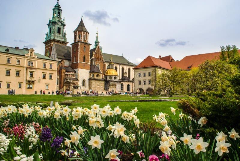 Wawel slott i våren - Krakow, Polen royaltyfria foton