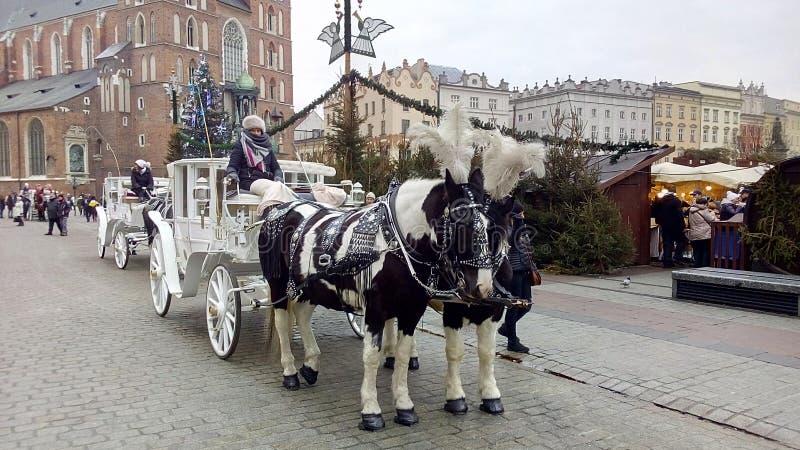 Wawel - vrouwen en toren en paarden royalty-vrije stock foto's