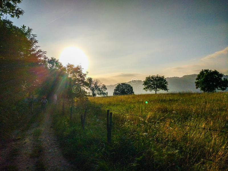 Way through a field full of yellow grass and trees in the morning sunrise, with two pilgrims walking. Camino de Santiago royalty free stock photography