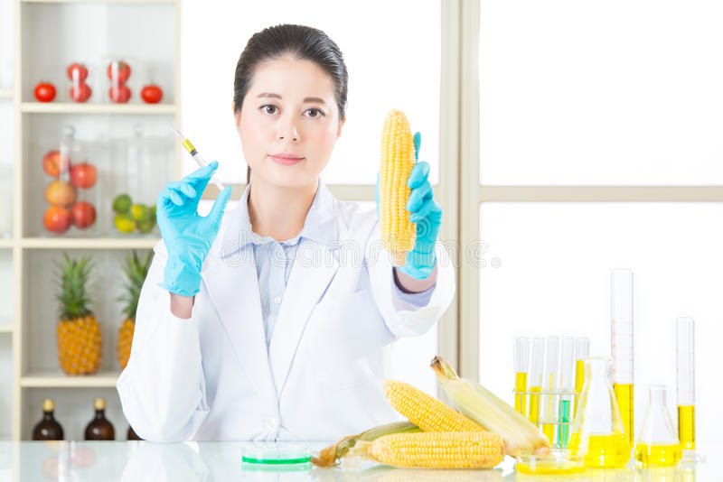 The only way home is to fine the gmo answer out stock photos
