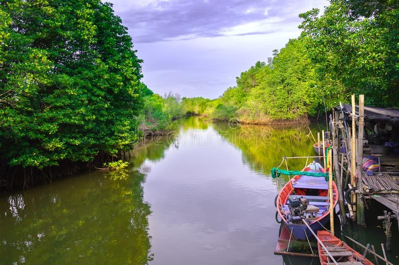 The way of life of the villages along the canal near mangrove forest royalty free stock photos