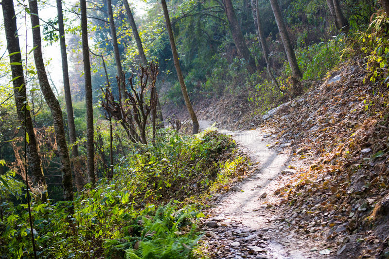 Way on the mountain for trekking. Nepal stock images