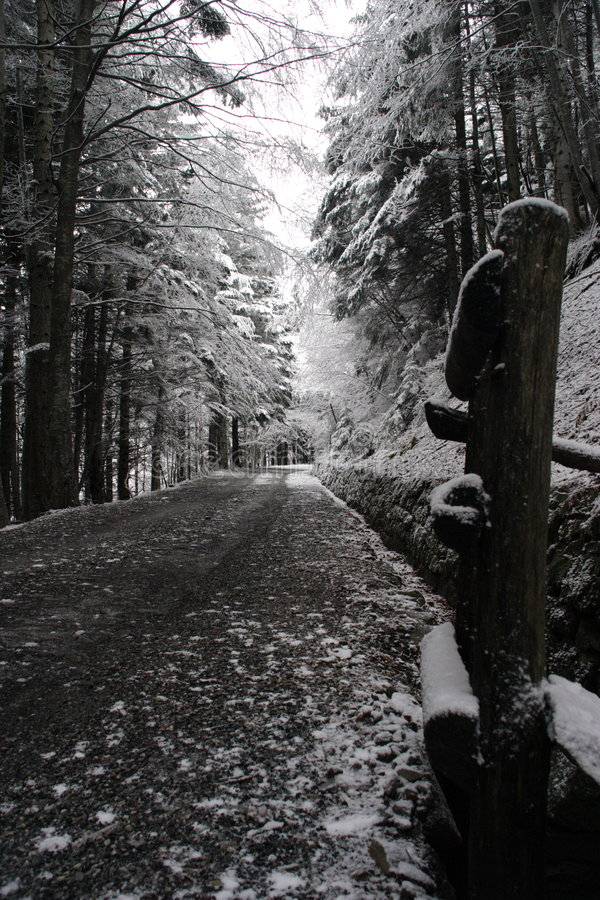 A way in the snow royalty free stock photography