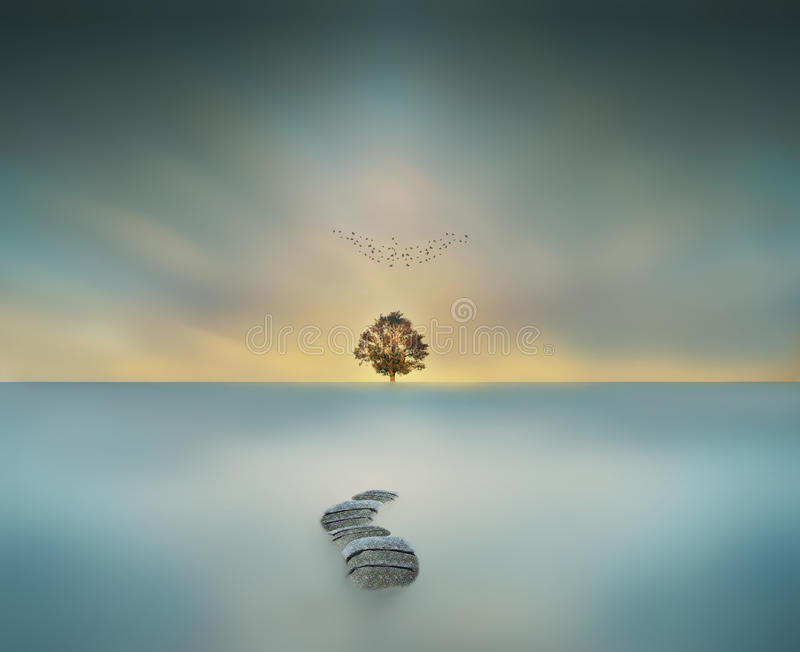 way to heaven magical big tree in waterscape long exposure stock images