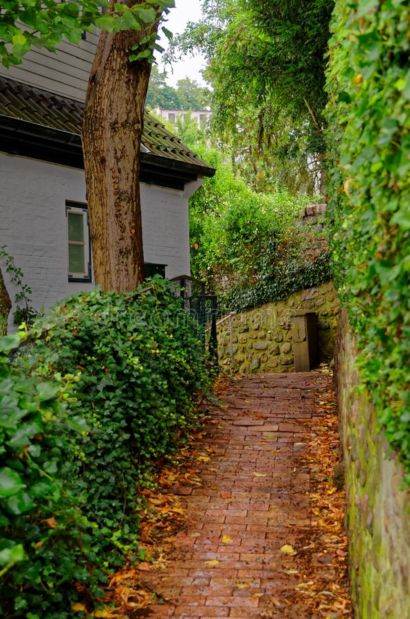Way to a house in Treppenviertel lit. stairs quarter in Hamburg. Stairs to a house in so called Treppenviertel lit. stairs quarter located in Hamburg Blankenese stock images