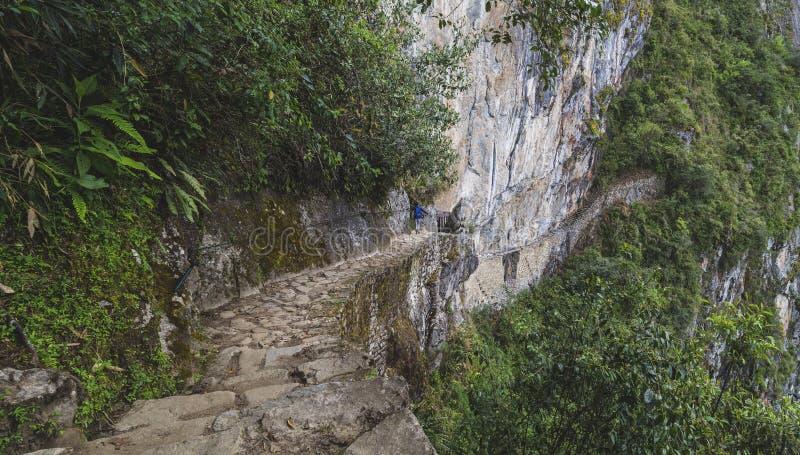 Way to the last Inca bridge, Machu Picchu in Peru - lost city of Inca. Indigenous, cusco, cloud, forest, architecture, scenic, culture, america, landmark stock photo