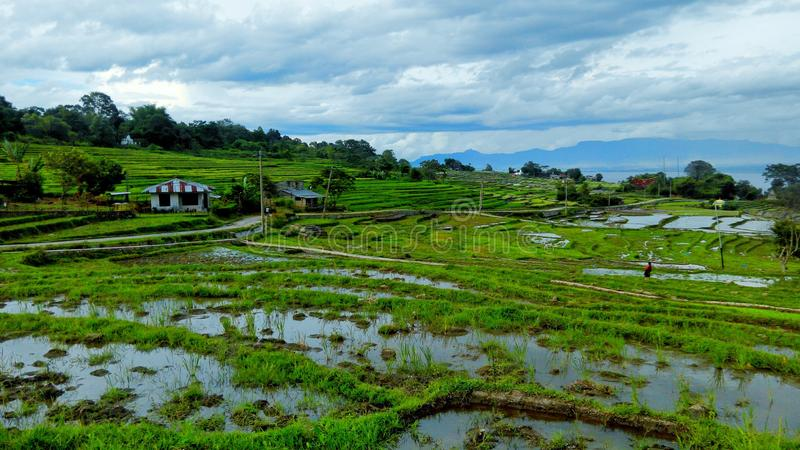 On the way to Lumban Silintong. Taken from Lumban Silintong stock photography
